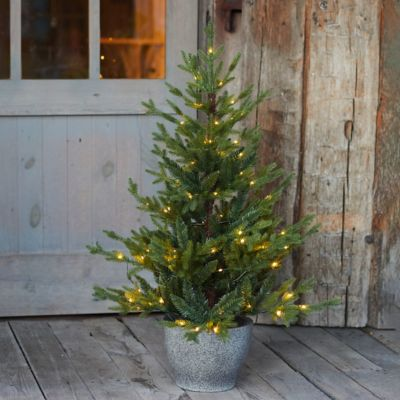 Faux Pre-lit LED Potted Norway Tabletop Tree