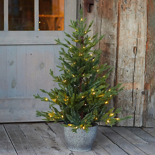 View larger image of Faux Pre-lit LED Potted Norway Tabletop Tree