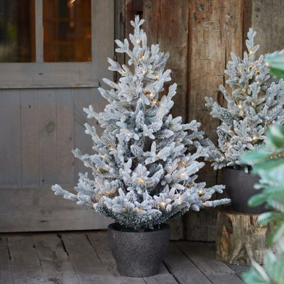 Faux Snowy Pre-lit LED Potted Norway Tabletop Tree