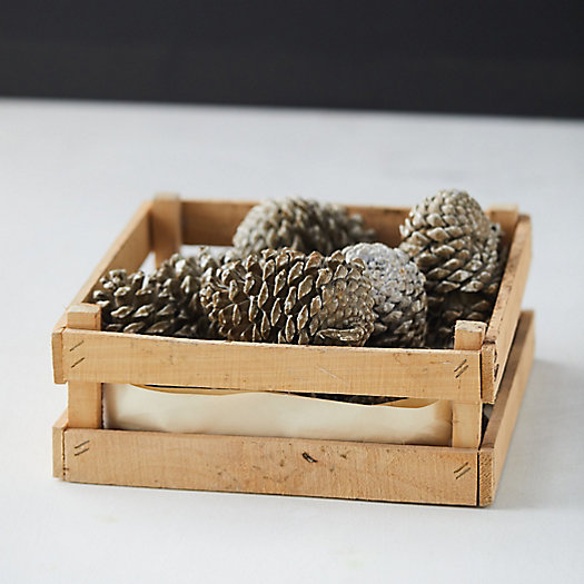 View larger image of Wax Pine Cone Crate