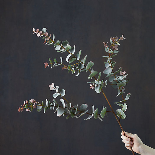 View larger image of Faux Flowering Eucalyptus Spray