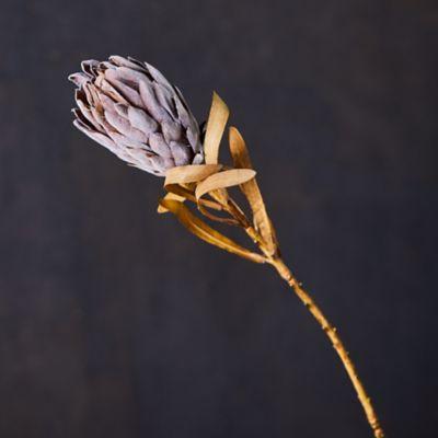 Faux Protea Stem, Gray