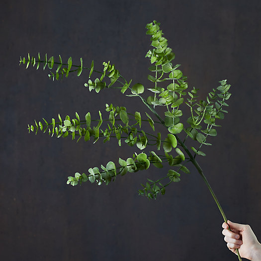 View larger image of Faux Eucalyptus Spray, Dark Green