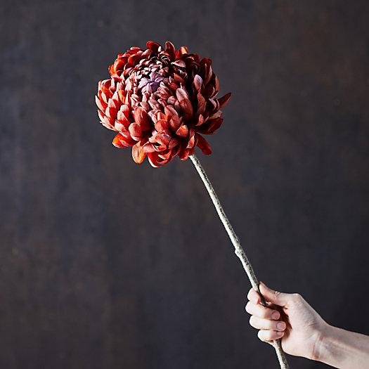 View larger image of Faux Chrysanthemum Stem