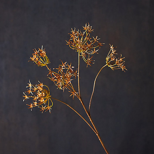 View larger image of Faux Queen Anne's Lace Spray, Gold
