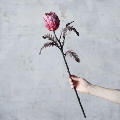 Faux Protea Stem