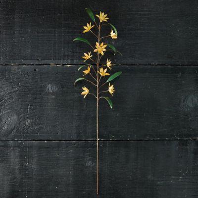 Colorful Iron Flower Stem