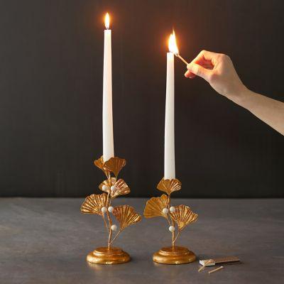 Ginkgo Candlestick