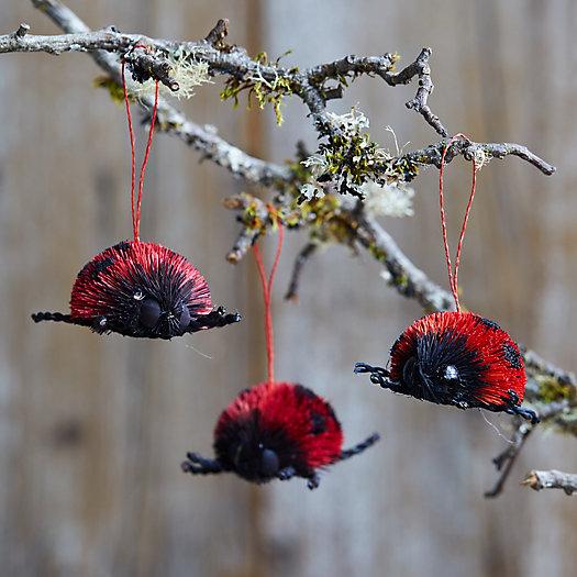 View larger image of Ladybug Brush Ornaments, Set of 3