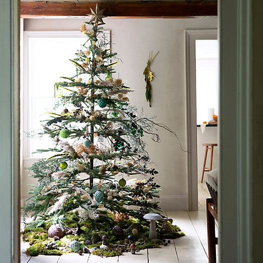 View larger image of Faux Silvertip Fir