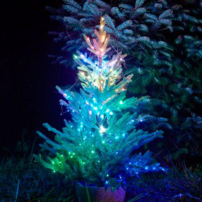 Stargazer Color-Changing Light Strand