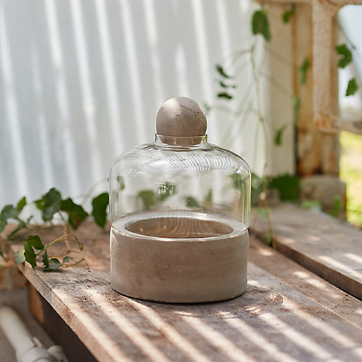 View larger image of Terrarium with Concrete Base, Low Wide