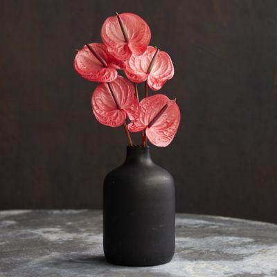 Fresh Pink Anthurium Bouquet