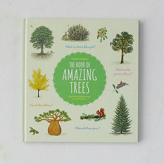 View larger image of The Book of Amazing Trees