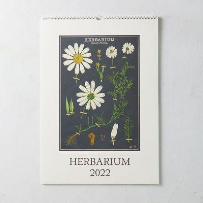 Herbarium 2022 Wall Calendar