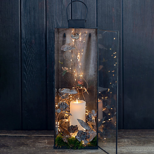 View larger image of Shop the Look:  Falling Stars Planted Lantern