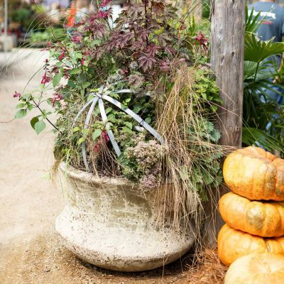 Outdoor Fall Containers