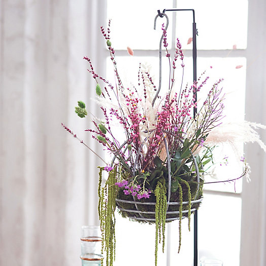 View larger image of Shop the Look: Preserved Hanging Gardens with the Over-the-Table Display Hook