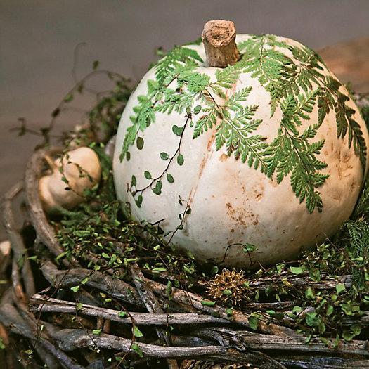 View larger image of Pumpkin Decoupage Workshop