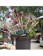 Fall Container Inspiration
