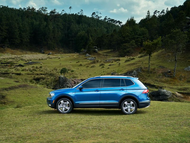 Silhouette of pre-owned silk blue metallic Volkswagen Tiguan parked and surrounded by a vibrant green pasture.